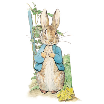 peterrabbit350x350